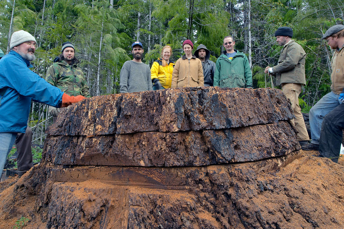 Activists gather around a cross-section from an ancient Douglas-fir tree logged in the Willamette national forest, Oregon. It...