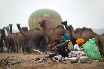 A hot air balloon takes off behind a camel herder at the Pushkar Camel Fair, Pushkar, Rajasthan, India