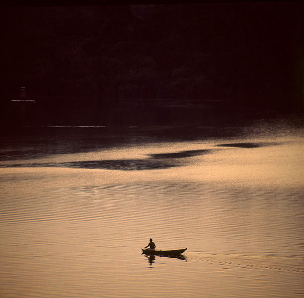 Canoe on the Amazon