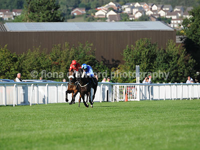 5.35pm Handicap Hurdle Race with winner Sedgemoor Express
