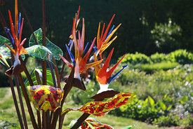 cool_image_of_glass_art_at_botantical_gardens