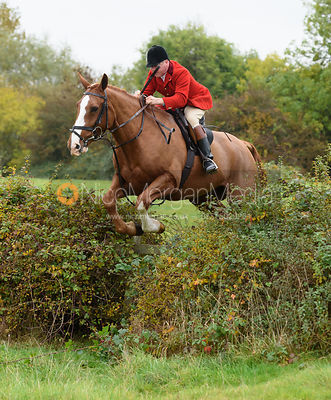 Belvoir Hunt Opening Meet, Long Clawson 29/10