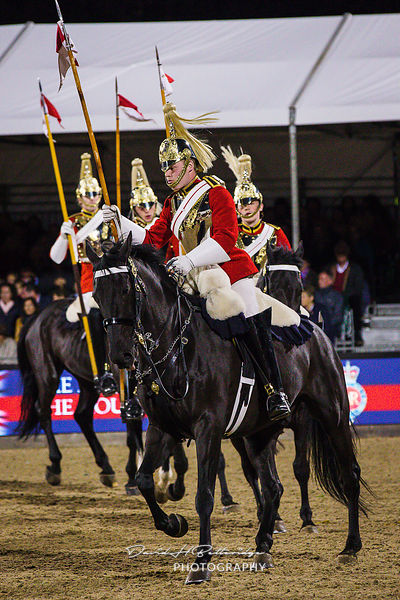 Royal Windsor Horse Sow 2018