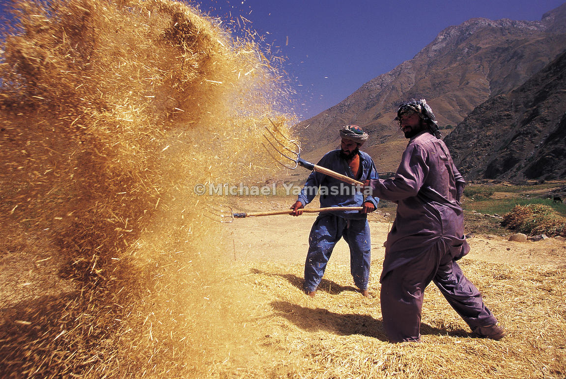 Separating the seed from the chaff in Badakshan.