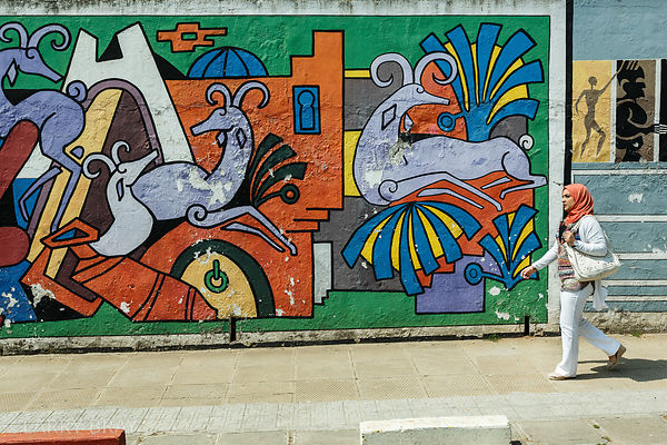 Wall of art in a street scene in Algiers, Algeria, North Africa
