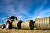 Farmer making a line of round silage bales in preperation for them being wrapped.