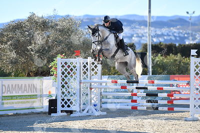 Oliva, Spain - 2018 January 16: 5 years old 1m15 during CSI Mediterranean Equestrian Tour 1..(photo: 1clicphoto.com I Nicole ...