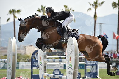 Oliva, Spain - 2018 April 22: Gold tour 1m45 during CSI Mediterranean Equestrian Tour 4.(photo: 1clicphoto.com)