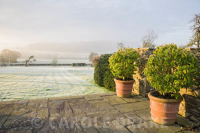 Terrace with Prunus lusitanica 'Myrtifolia' in terracotta pots with views of the Herefordshire countryside beyond.