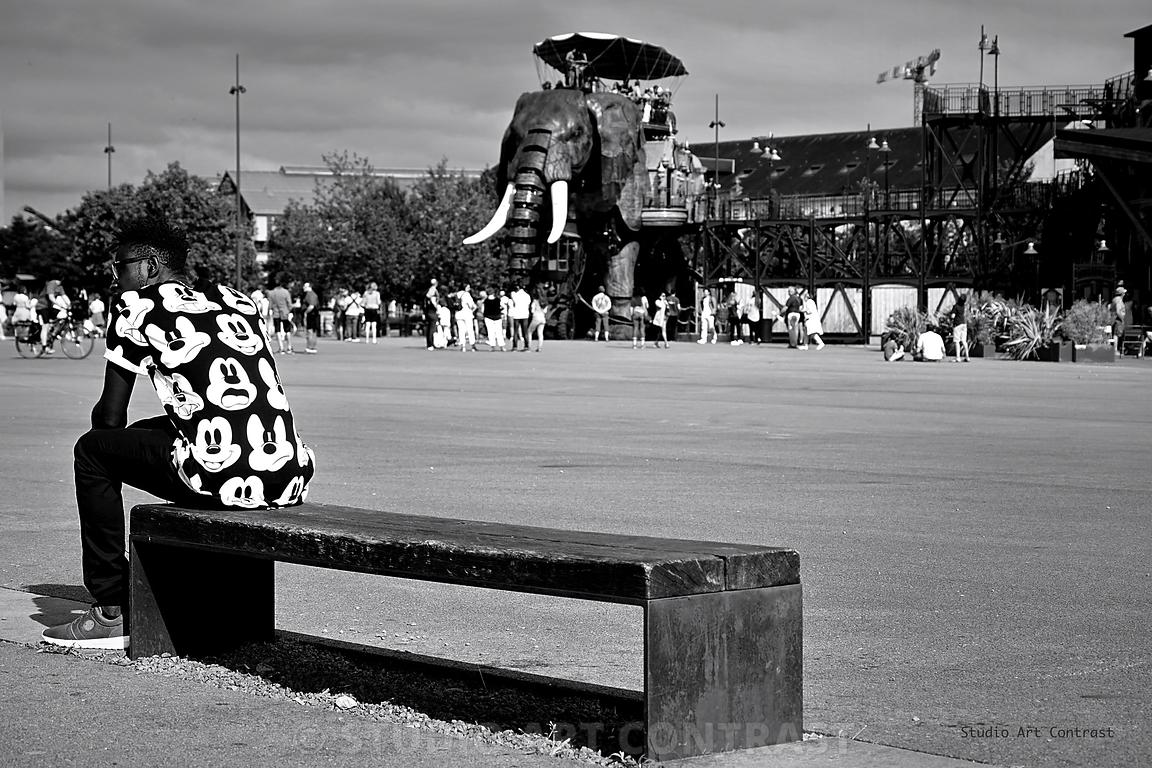 nantes_elephant_banc_homme_mickey_black_lunette_BNW_signee