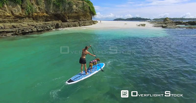 Woman Paddle Boarding Her Dog. Panama Drone Video