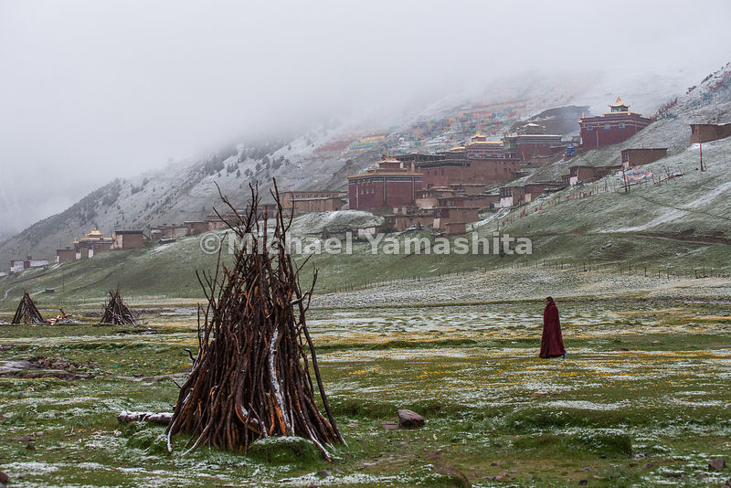 Wood, which will fuel the stoves and warm the rooms of the monasteries, is a precious commodity on the Tibetan Plateau.