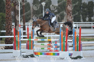 Oliva, Spain - 2018 January 28: Bronze tour 1m30 during CSI Mediterranean Equestrian Tour 1..(photo: 1clicphoto.com I Herve B...