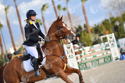 Oliva, Spain - 2018 January 27: Silver tour 1m30 during CSI Mediterranean Equestrian Tour 1..(photo: 1clicphoto.com I Nicole ...