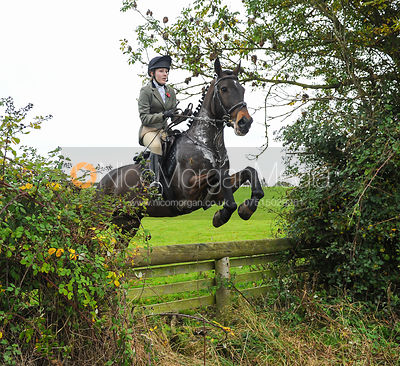 The Cottesmore Hunt at Toft 31/10