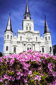 St. Louis Cathedral and Flowers in New Orleans