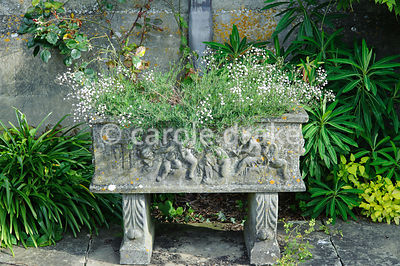 Stone plant trough. Rodmarton Manor, Rodmarton, Tetbury, Glos, UK