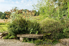Burrow Farm Gardens. © Jo Whitworth