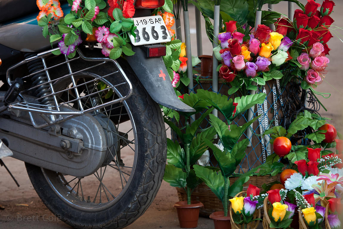 Plastic flowers for sale in Jodhpur, Rajasthan, India