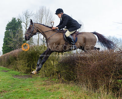 Rory Bevin jumping the first hedge - Barleythorpe