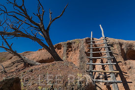 Ladder along Tsankawi Village Trail in Bandelier National Monument