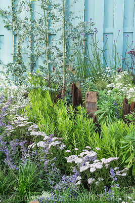 The Southend Council 'By The Sea' garden at the RHS Hampton Court Flower Show 2017. Designer: James Callicott. Sponsor: South...