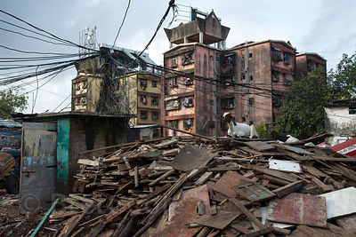 Chaos reigns in Mumbai, India, where goats on mounds of construction debris and incredible tangles of electrical wires in res...