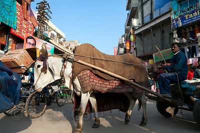 Traffic in the Paharganj area of Delhi, India