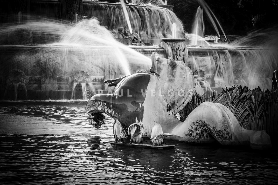 Chicago Buckingham Fountain Seahorse in Black and White