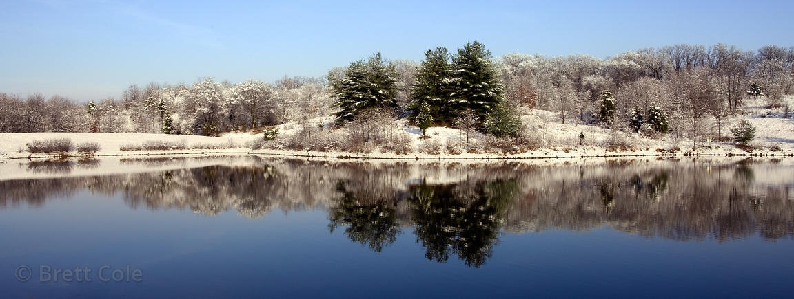 Reflection in a small lake in Winter, Green Farm Park, Montgomery County, Maryland
