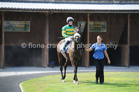 3.50pm Handicap Hurdle Race with winner Rum And Butter