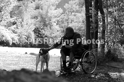 Man in a wheelchair walking his dog through the forest