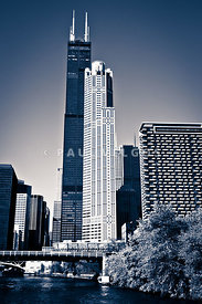 Chicago Skyline with Sears-Willis Tower