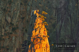 Mountain impression at Huangshan - Asia, China, Anhui, Huangshan, Flying Over Rock (Yellow Mountain) - digital