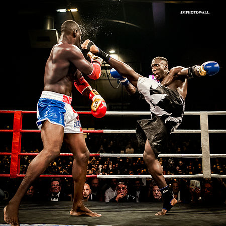 Paris Fight II: Pic of the day 207
