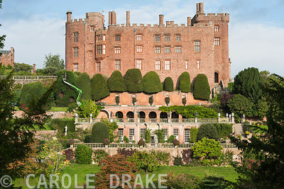 Facade of Powis Castle showing the sequence of garden terraces below it featuring massive clipped yews being shaped by a gard...