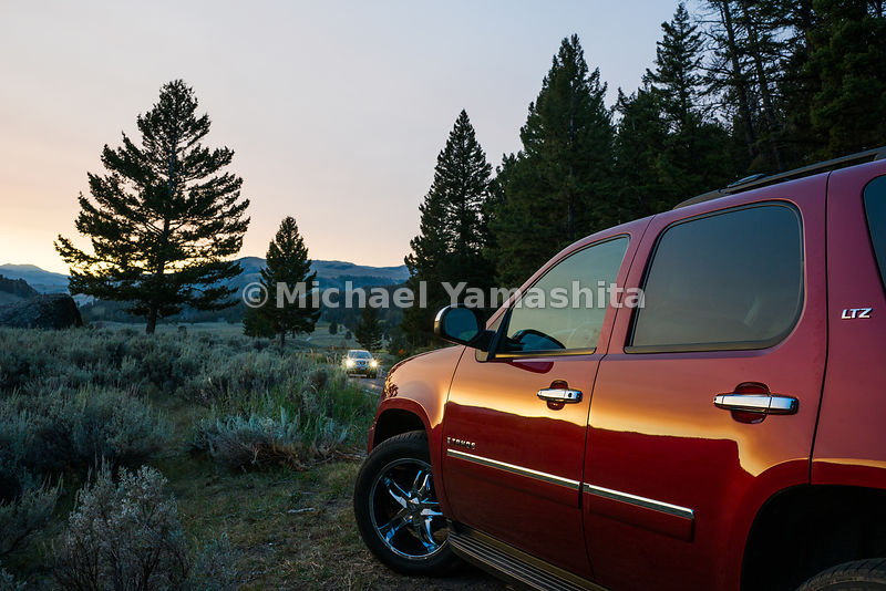 Chevrolet Tahoe at sunrise in the Northern Range area of Yellowstone National Park, Montana / Wyoming...Yellowstone National ...