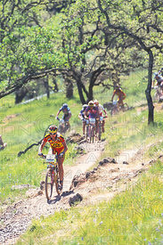 MARY GRIGSON NAPA VALLEY, USA. TISSOT MOUNTAIN BIKE WORLD CUP 2000