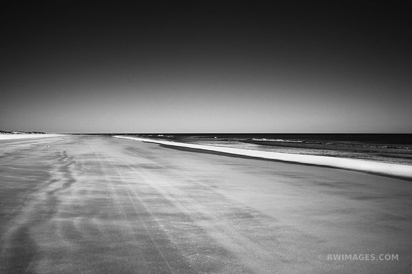 CUMBERLAND ISLAND BEACH CUMBERLAND ISLAND GEORGIA BLACK AND WHITE