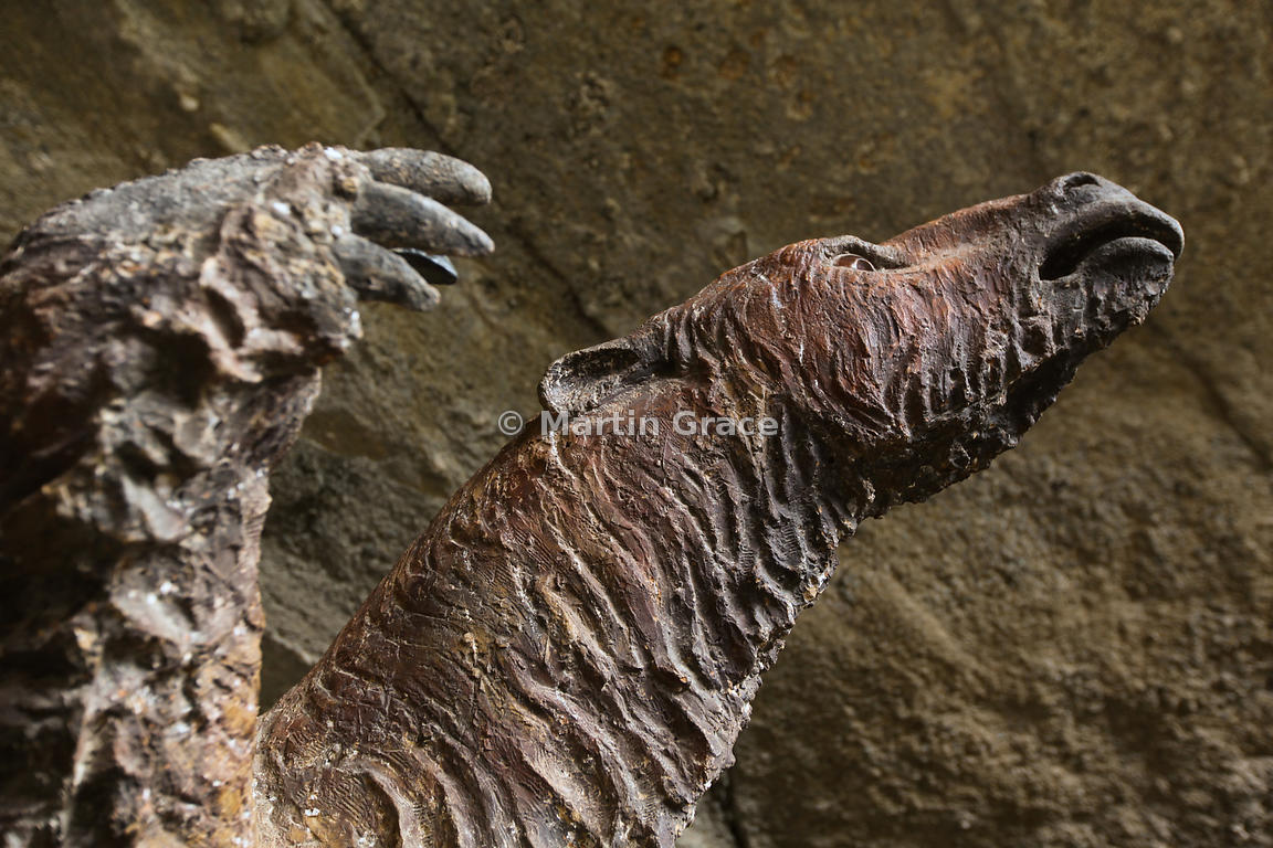 Model of the Mylodon or Giant Ground Sloth (Milodon darwini) in Mylodon Cave (Monumento Natural Cueva del Milodon), near Puer...