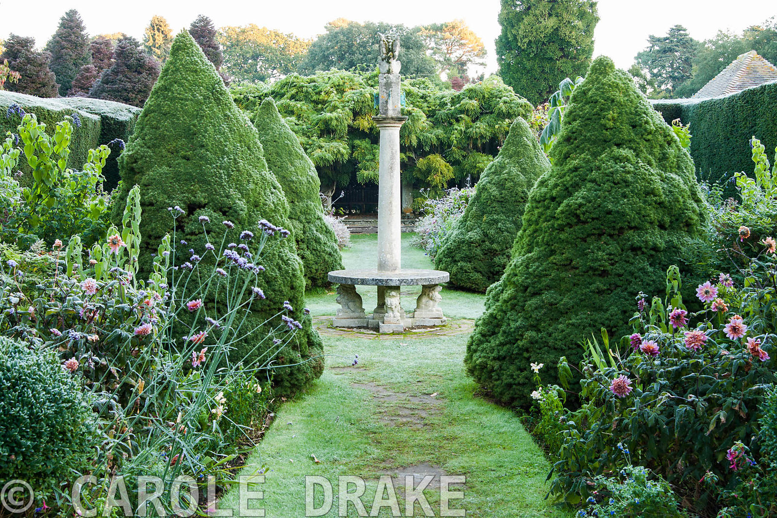 Frosty morning in the Sundial Garden surrounded by yew hedging and containing tree ferns, conical piceas and exotic herbaceou...