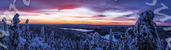 Ruka Blue Moment, Purple Skies
