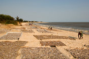 Mozambique, Beira, Fish drying on the beach.