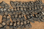 Traditional Karamojong sandles made from car tyres for sale at the Moroto cattle market, Uganda