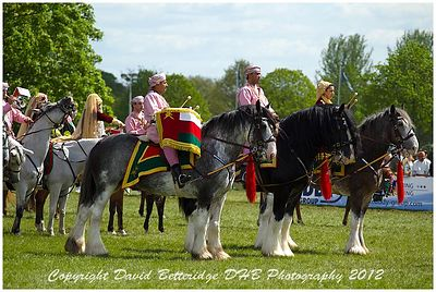 royal_windsor_2012_DHB_0104
