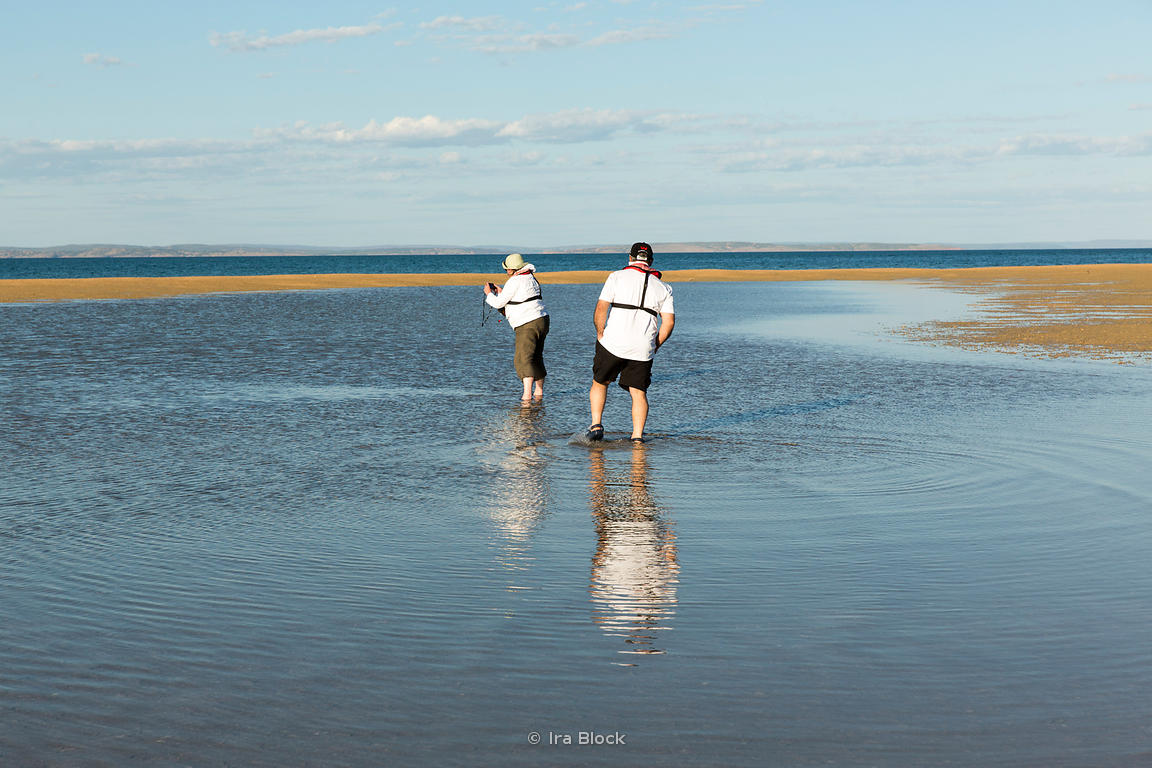 Tourists on an exposed sandbar near Montgomery Reef in Australia's Kimberley.