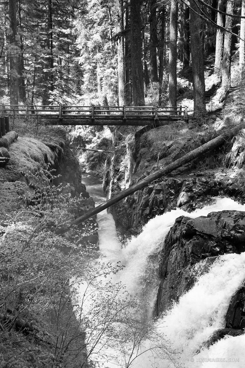 SOL DUC FALLS OLYMPIC NATIONAL PARK WASHINGTON BLACK AND WHITE VERTICAL