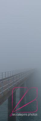 Roscoff's pier dissolves itself in the mist