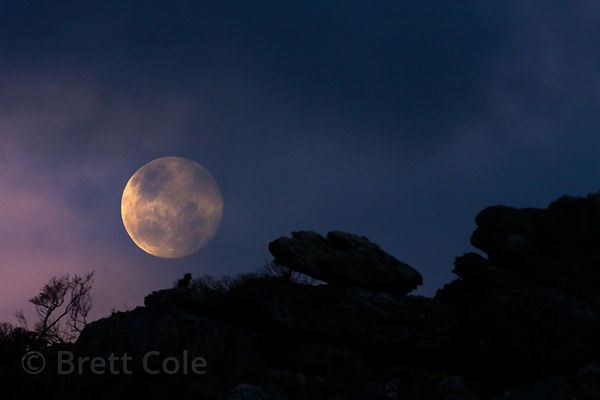 Full moon rising over rocks on the beach at Olifantsbos, Cape Peninsula, South Africa