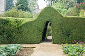 Clipped box hedge with archway forms one side of the vegetable garden. Rousham House, Bicester, Oxon, UK